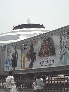Dorarion2